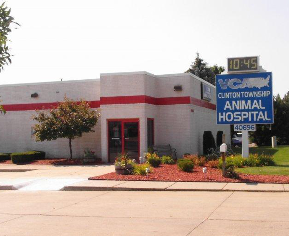 Hospital Picture of VCA Clinton Township Animal Hospital
