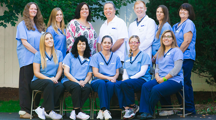 Homepage Team Picture of VCA Closter Animal Hospital