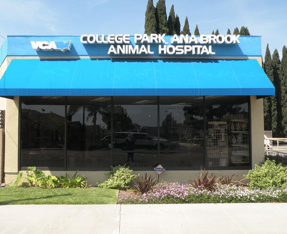 Hospital Picture of  VCA College Park Ana Brook Animal Hospital