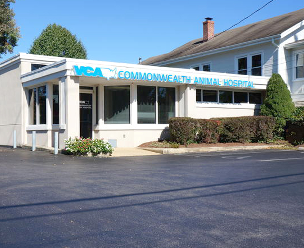 Hospital Picture of  VCA Commonwealth Animal Hospital
