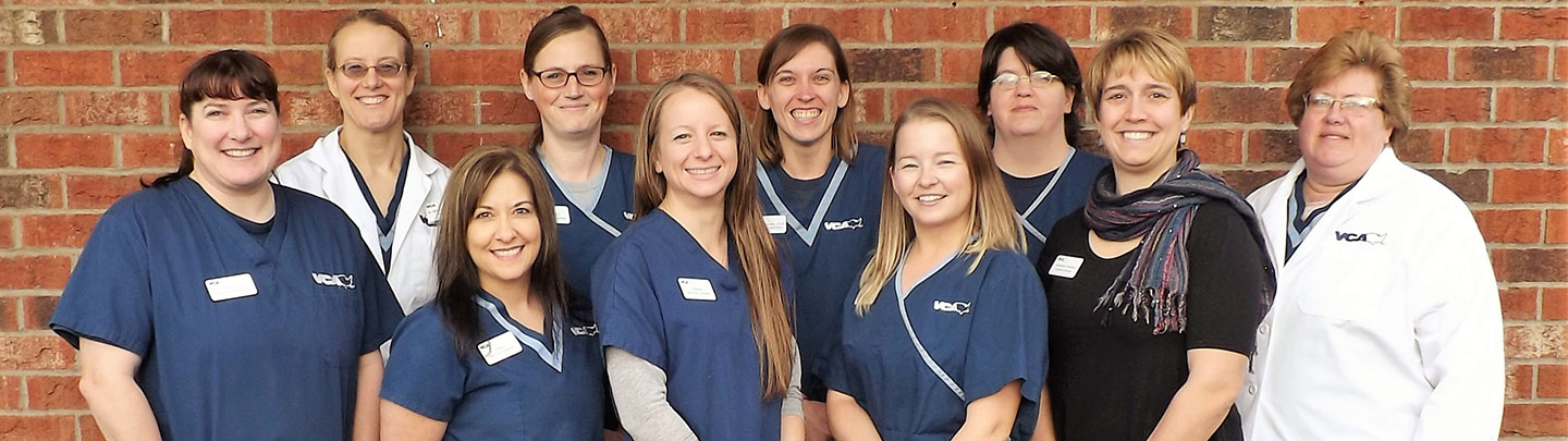 Companion Care - Our Team