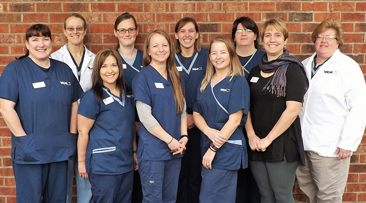 Homepage Team Picture of VCA Companion Care