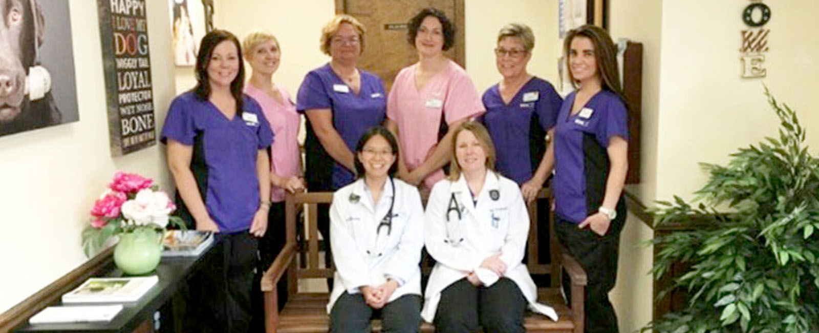 Homepage Team Picture of VCA Conewago Animal Hospital