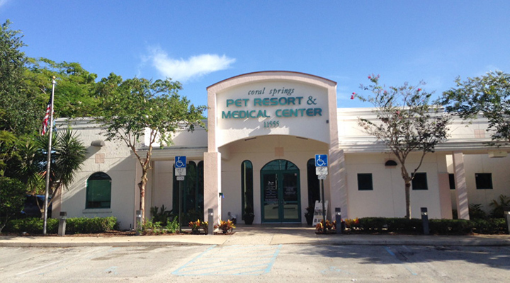 Homepage Hospital Picture of VCA Coral Springs Animal Hospital