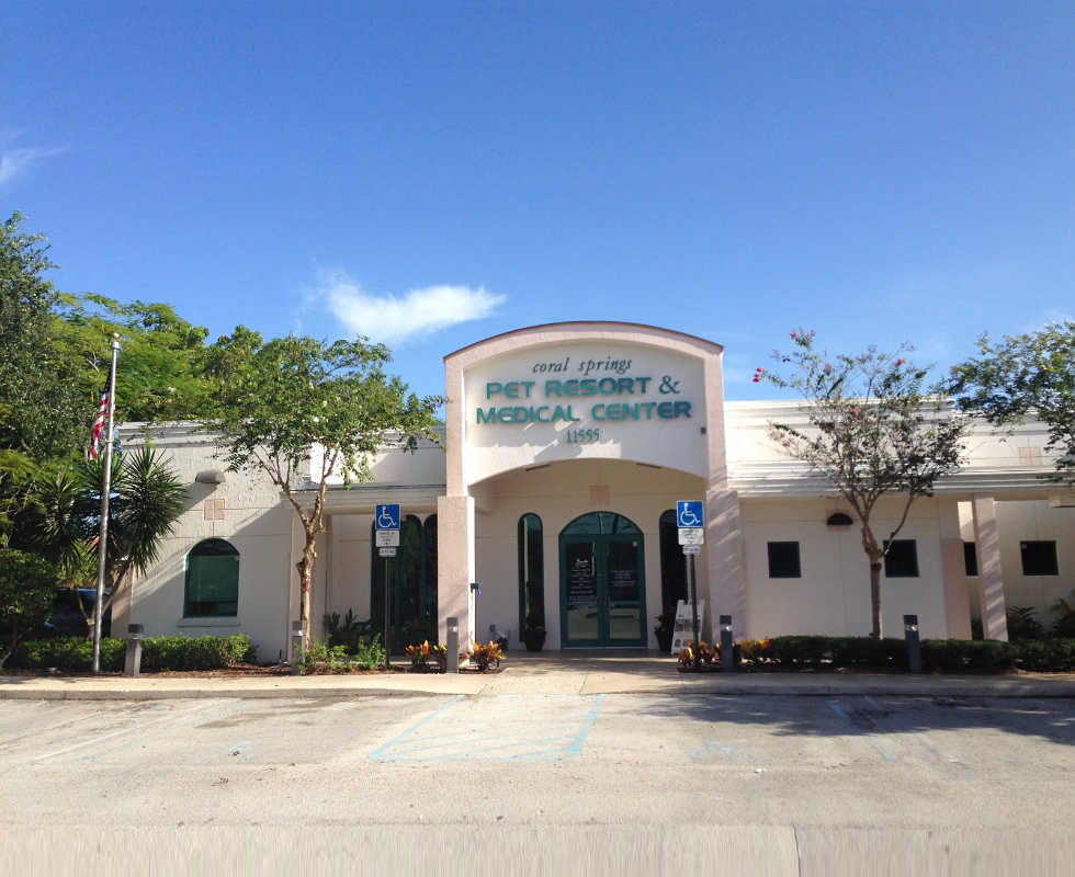 Hospital Picture of VCA Coral Springs Animal Hospital