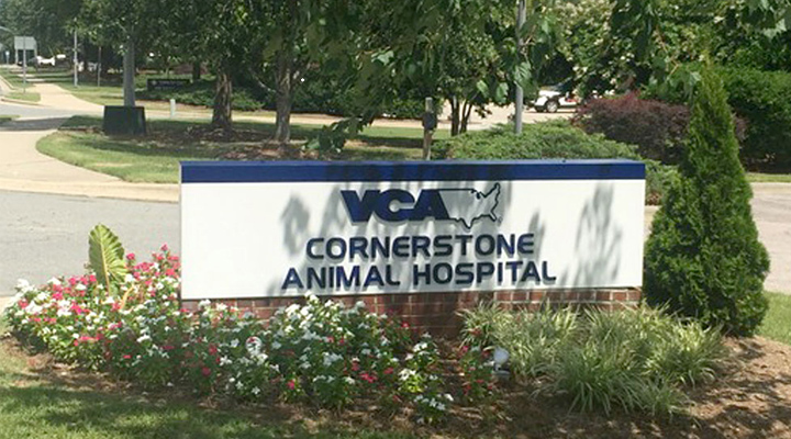 Homepage Hospital Picture of VCA Cornerstone Animal Hospital