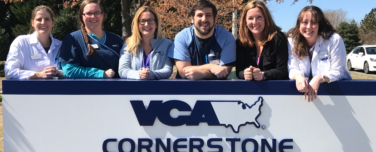 Team Picture of VCA Cornerstone Animal Hospital