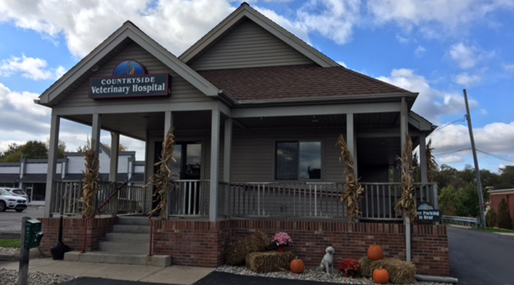 VCA Countryside Animal Hospital of Hamburg in Hamburg, Michigan