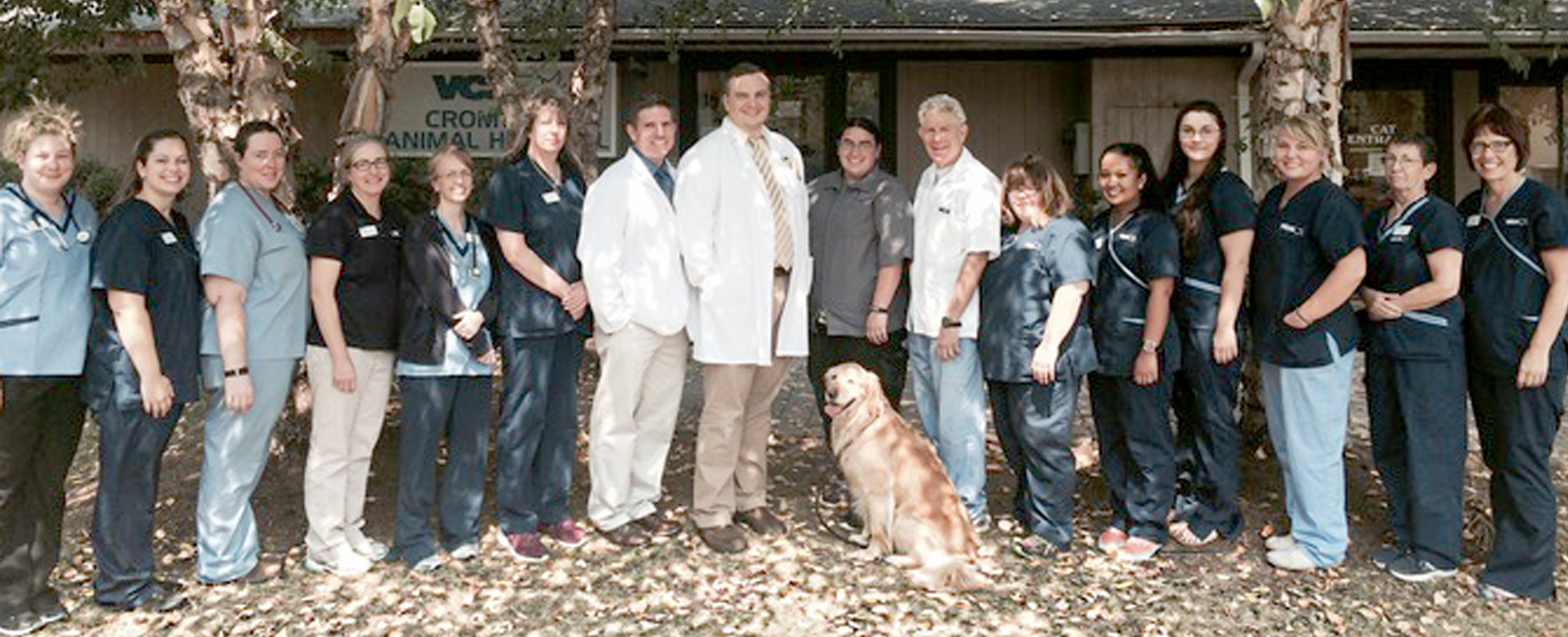 Homepage Team Picture of  VCA Cromwell Animal Hospital
