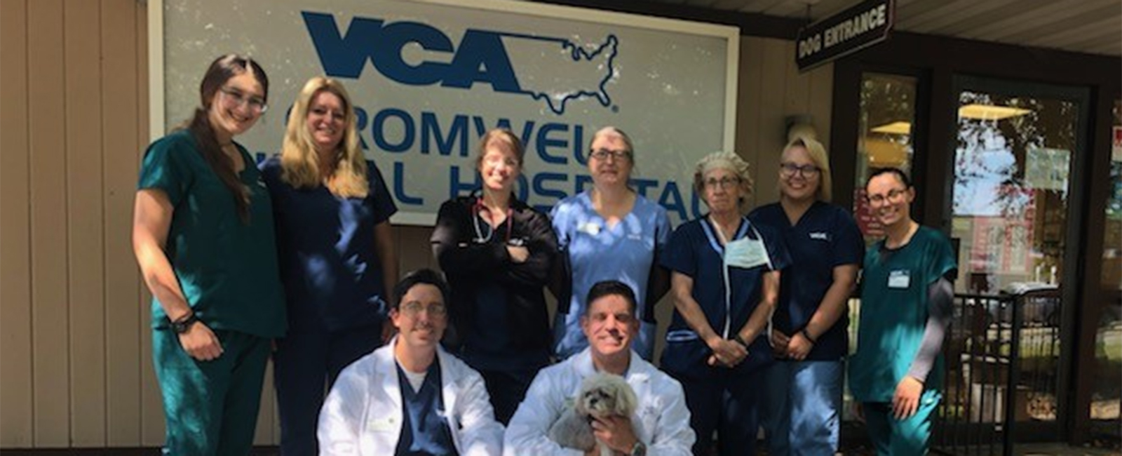 Team Picture of VCA Cromwell Animal Hospital