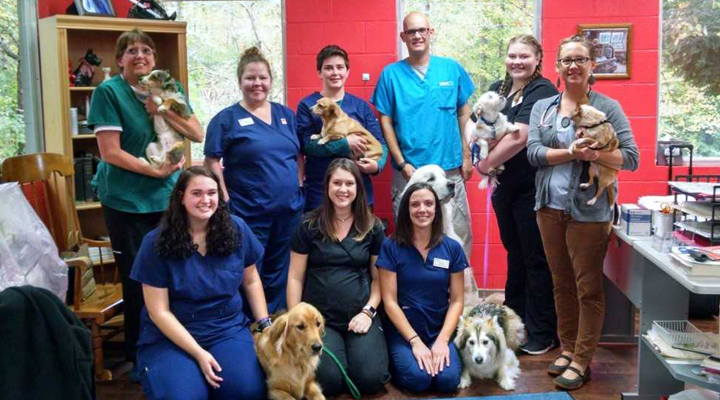 VCA Dahlonega Animal Hospital - Our Team