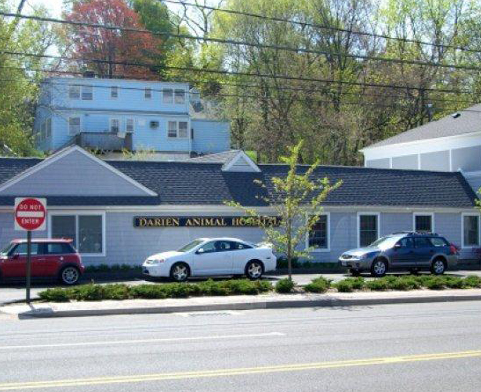 Hospital Picture of  VCA Darien Animal Hospital
