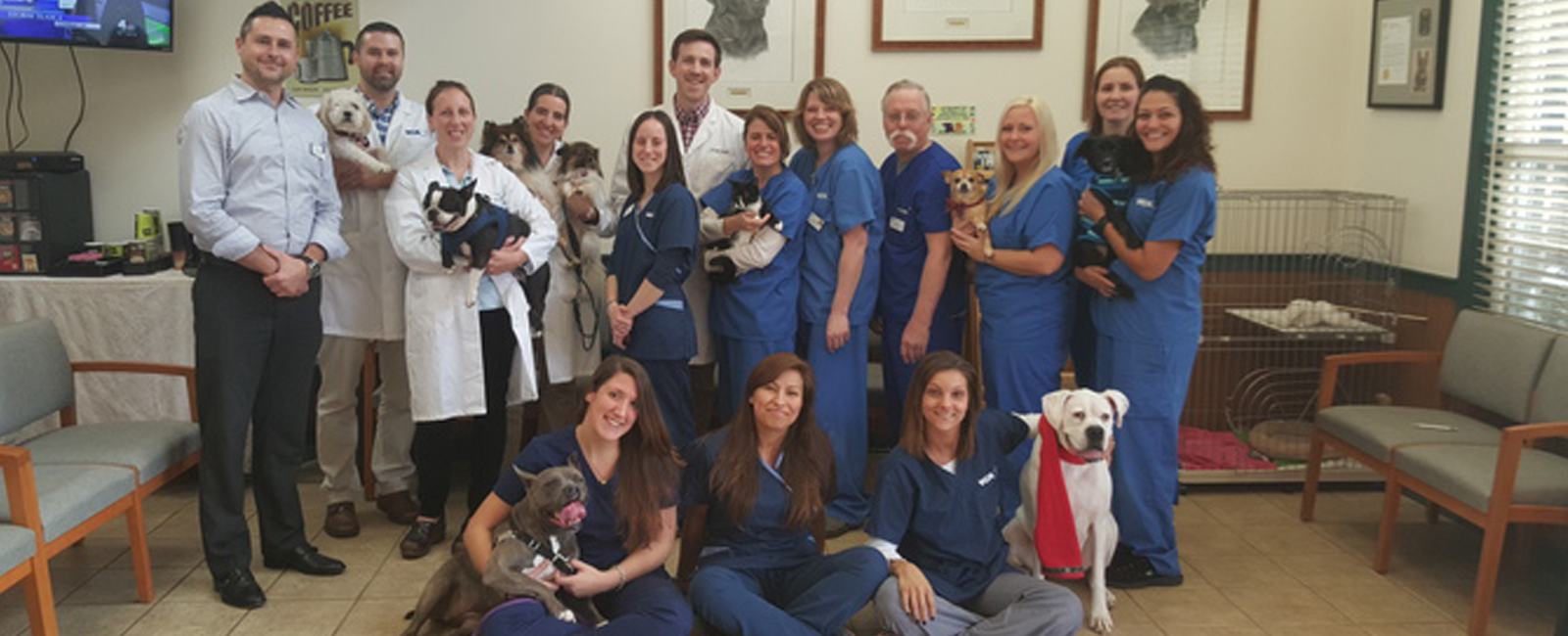 Homepage Team Picture of  VCA Darien Animal Hospital