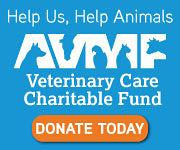 AVMF charitable fund logo