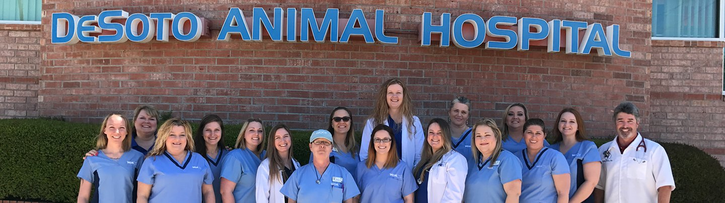 Team Picture of VCA DeSoto Animal Hospital