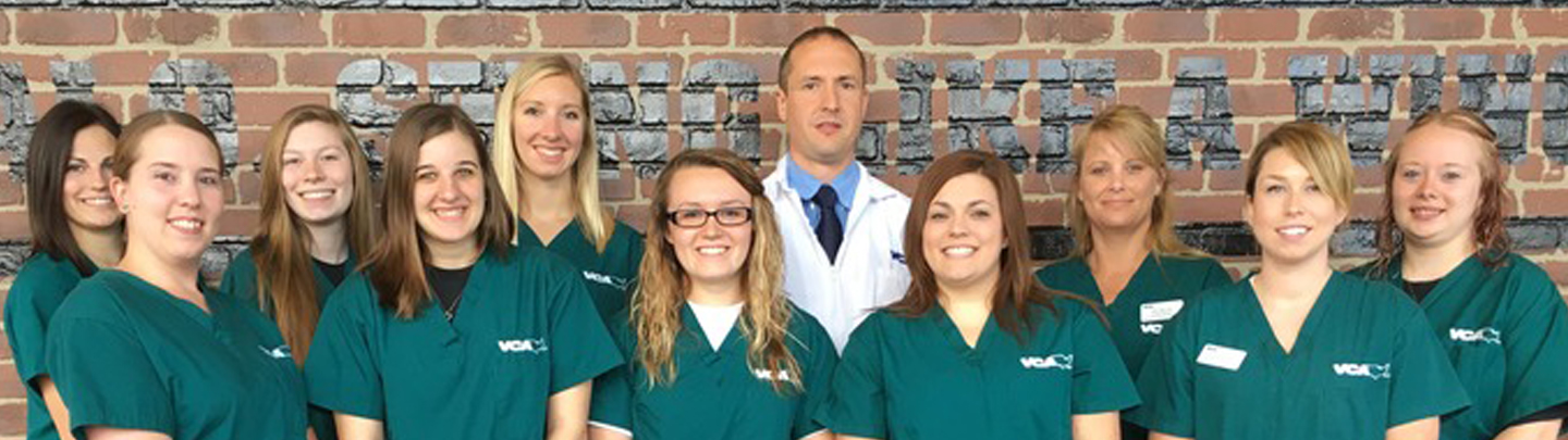 Team Picture of VCA Tiffin Animal Hospital