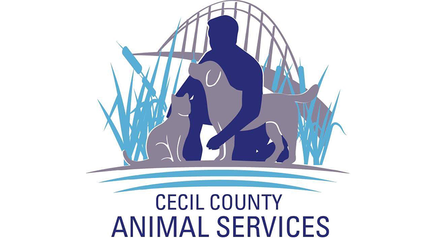 Visit the Cecil County Animal Shelter