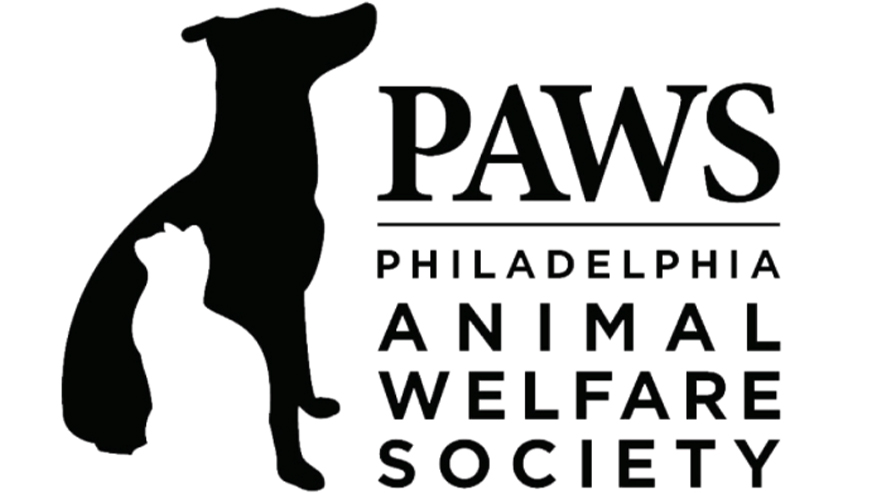 Visit Philly Paws
