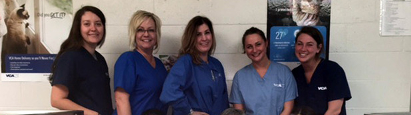 Team Picture of VCA Dudley Avenue Animal Hospital