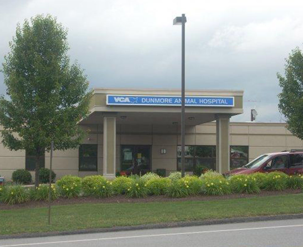 Hospital Picture of VCA Dunmore Animal Hospital