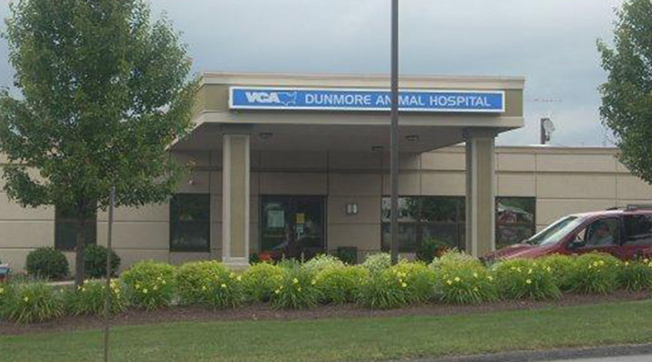 Homepage Hospital Picture of VCA Dunmore Animal Hospital