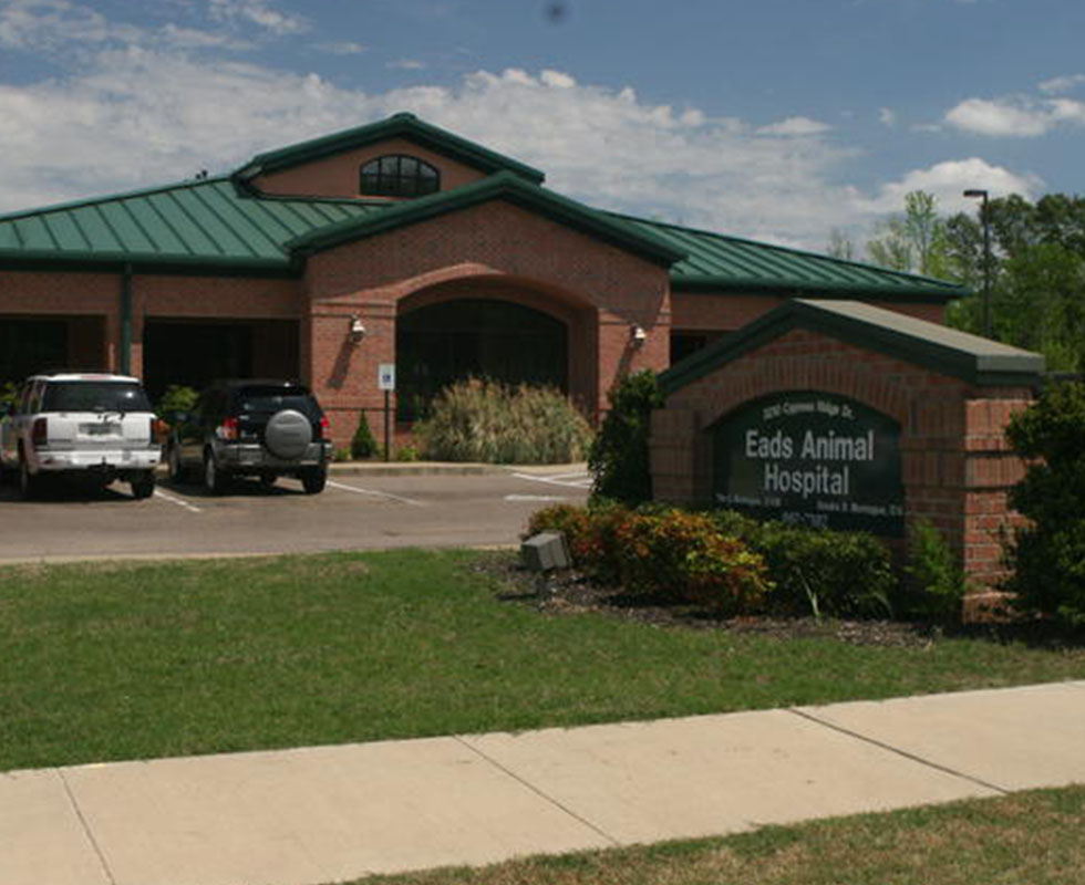 Hospital Picture of VCA Eads Animal Hospital