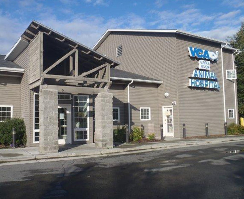 Hospital Picture of VCA Eagle River Animal Hospital