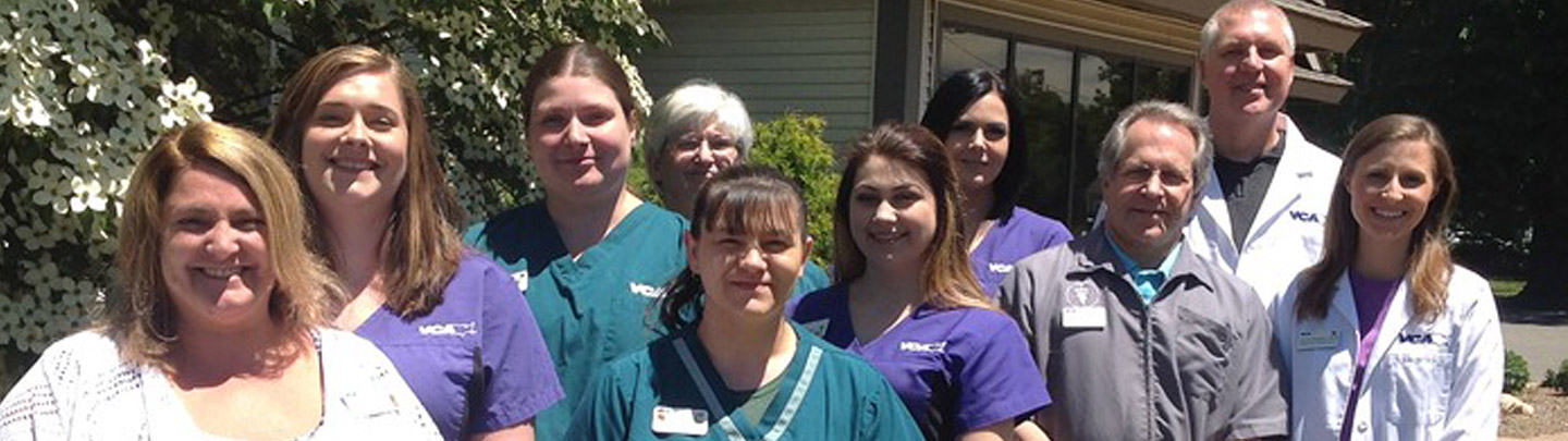 Team Picture of VCA East Hartford Animal Hospital