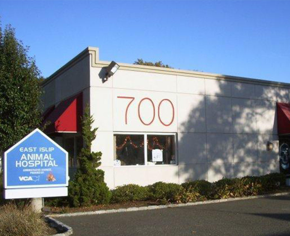 Hospital Picture of VCA East Islip Animal Hospital