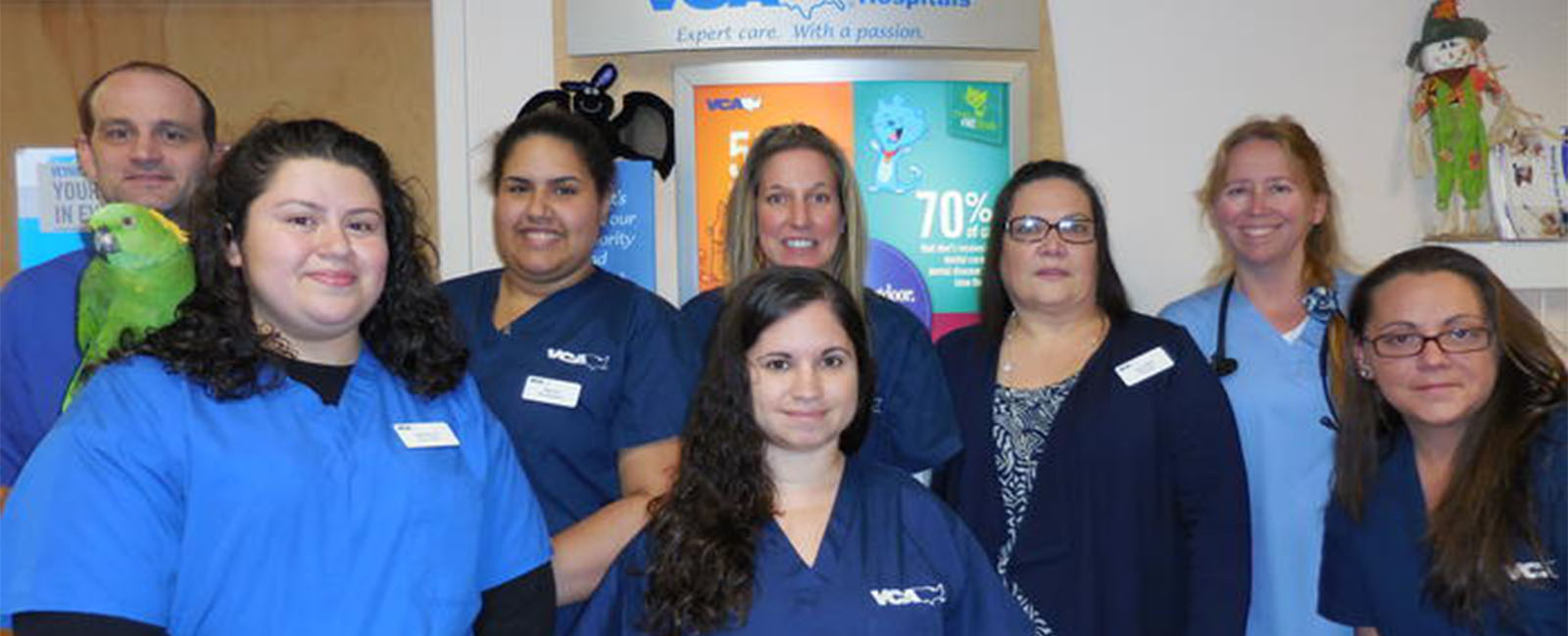 Homepage Team Picture of VCA Eastslip Animal Hospital