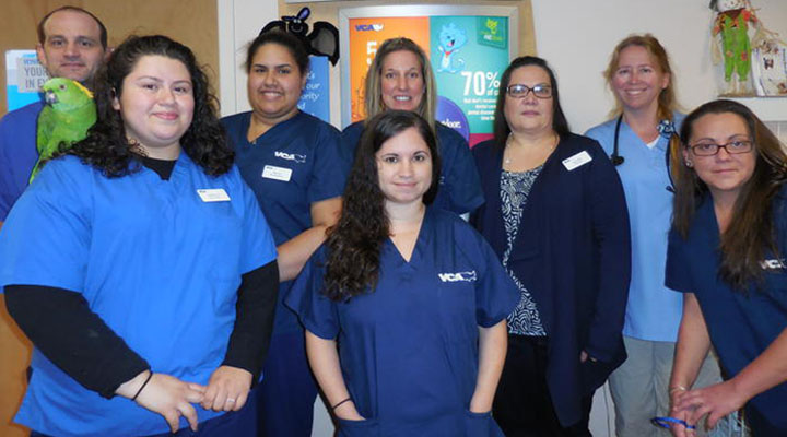 Homepage Team Picture of VCA East Islip Animal Hospital