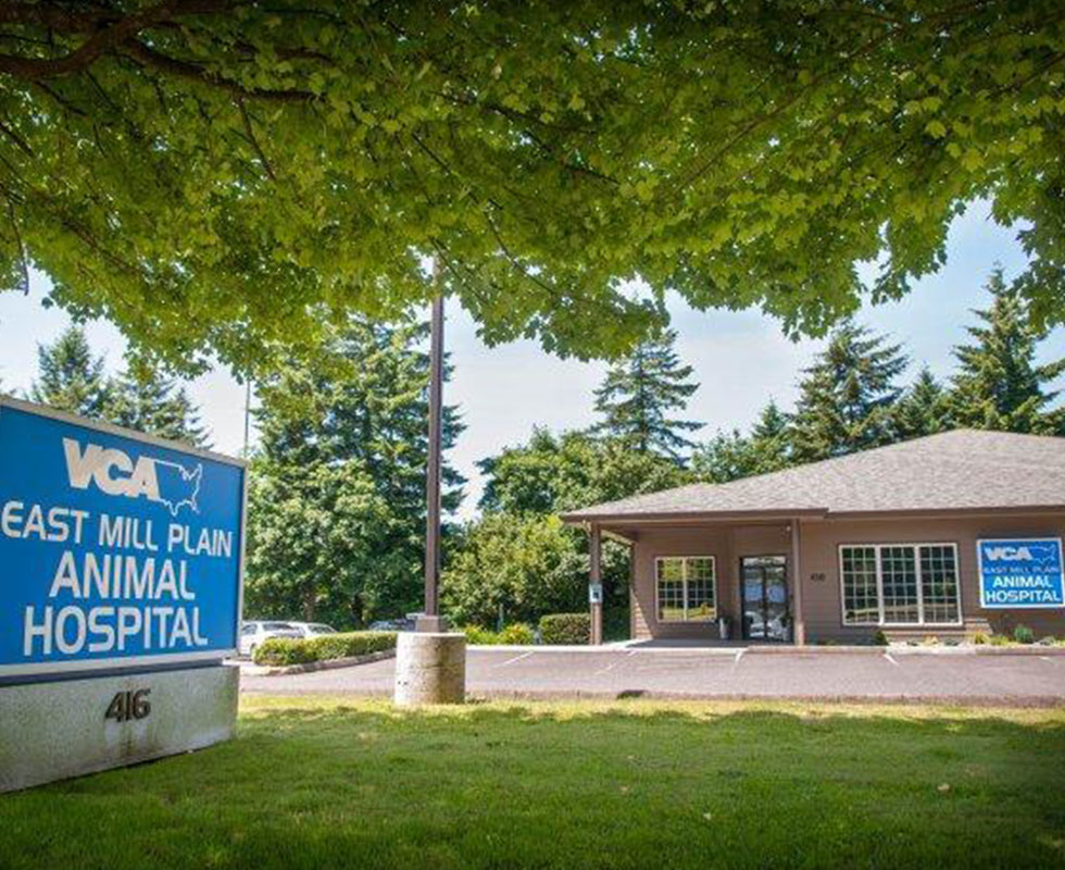 Hospital Picture of VCA East Mill Plain Animal Hospital