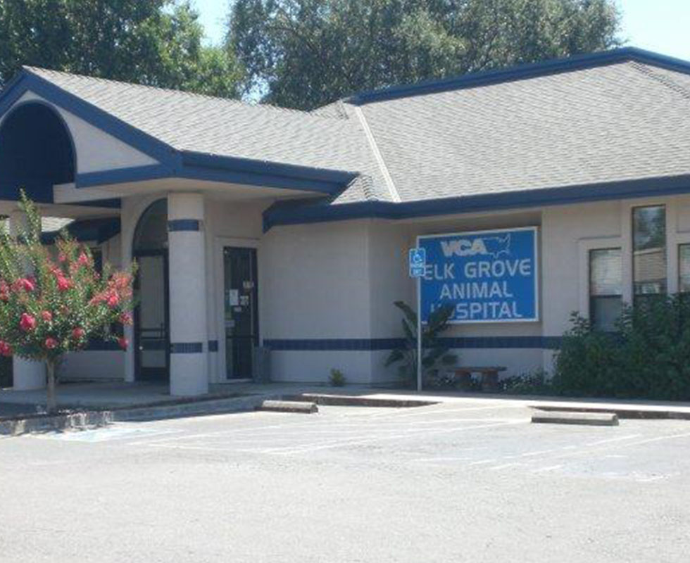 Hospital Picture of VCA Elk Grove Animal Hospital