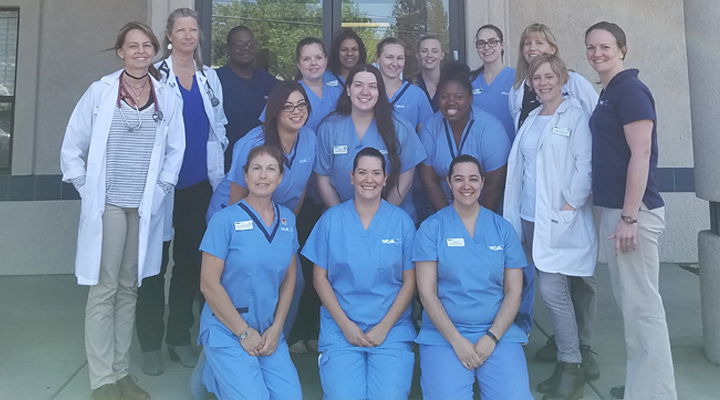 Homepage Team Picture of VCA Elk Grove Animal Hospital