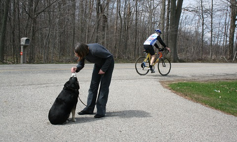 Introduction to Desensitization and Counterconditioning