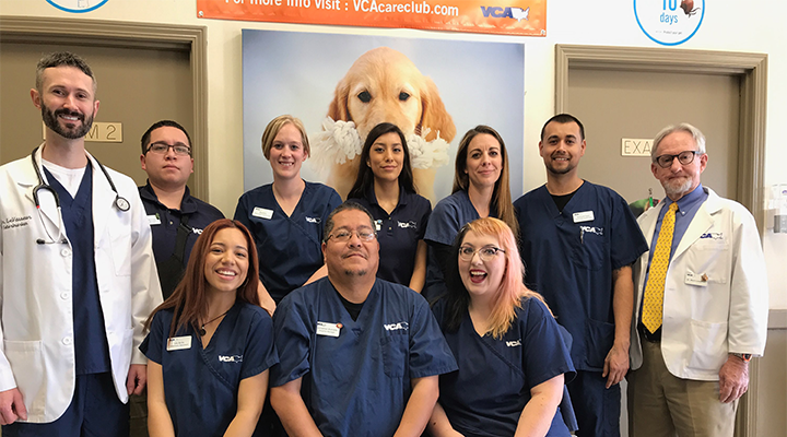 Veterinarians in Tempe, AZ | VCA Elliot Park Animal Hospital
