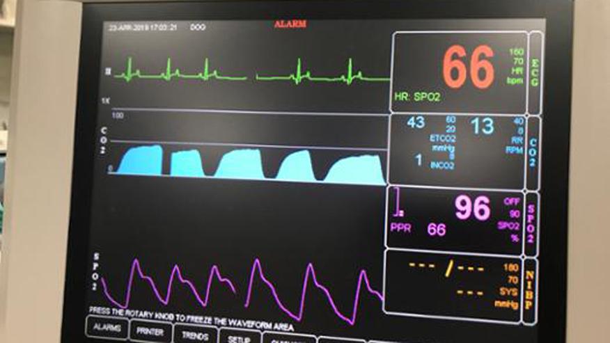 Sevoflurane Anesthesia in Walnut Creek, CA   VCA Encina