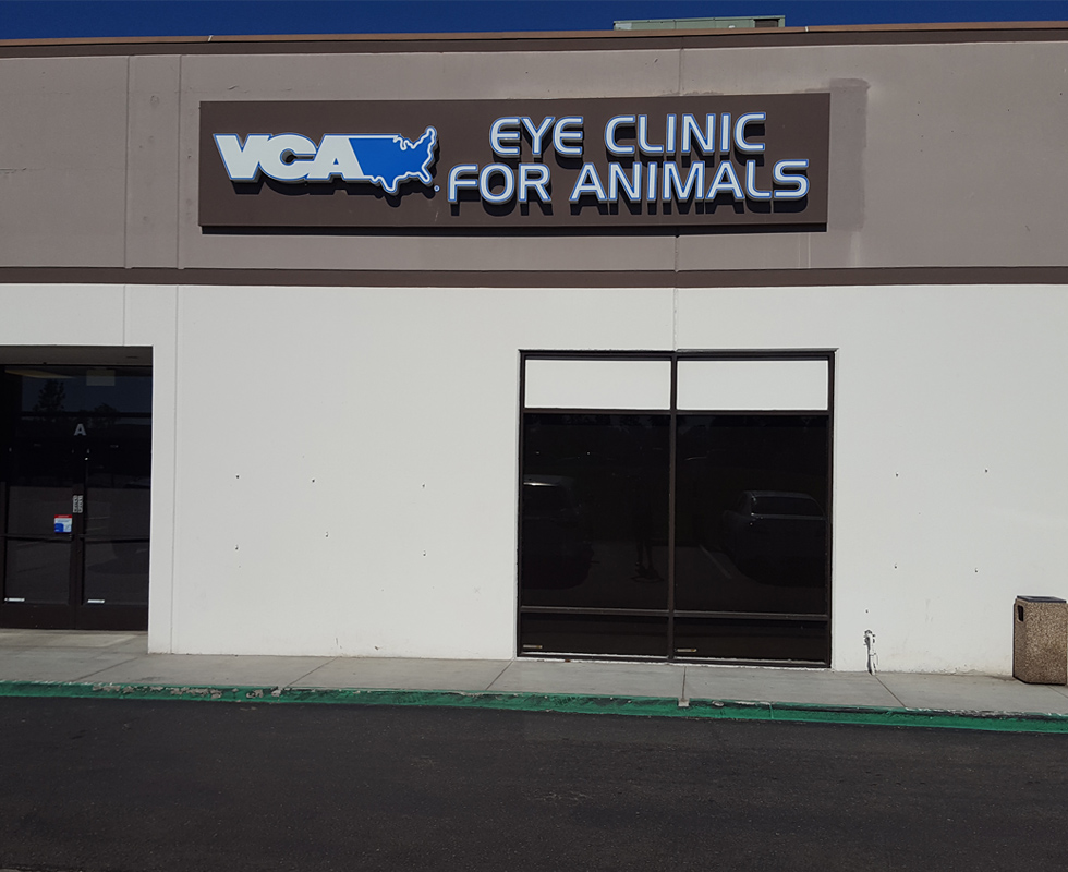 Hospital Picture of VCA Eye Clinic for Animals