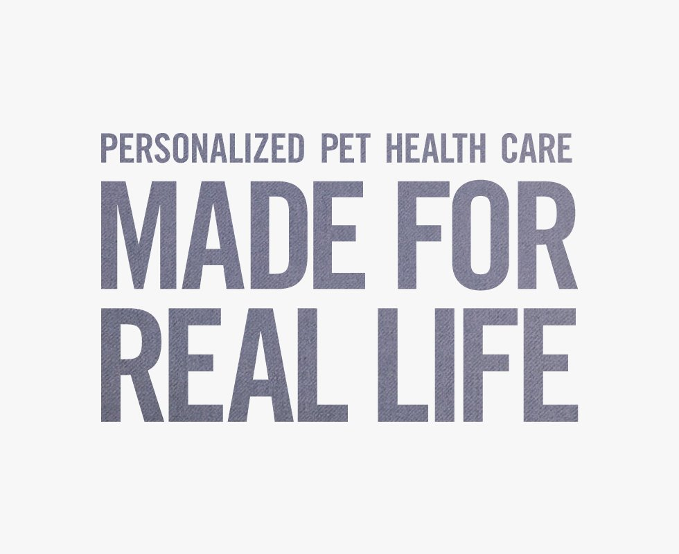 personalized pet health casre made for real life