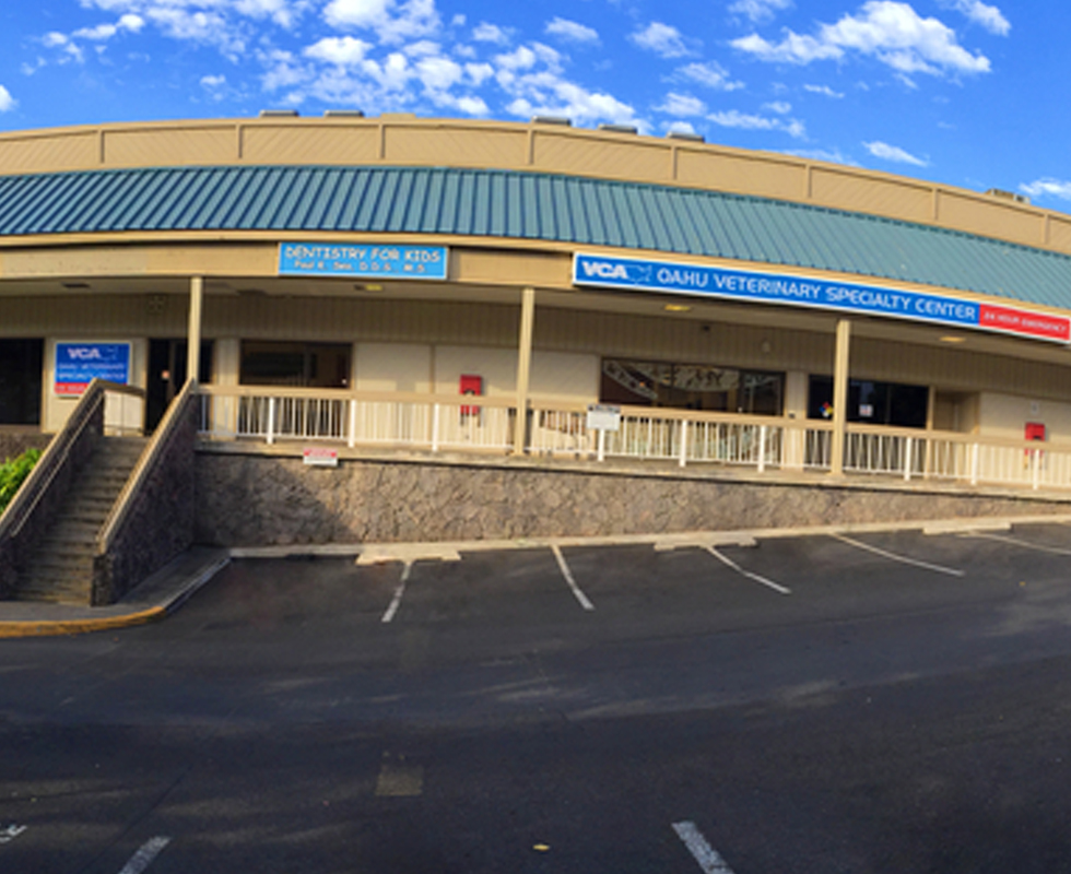 Hospital Picture of  VCA Family Family and Oahu Veterinary Specialty Center
