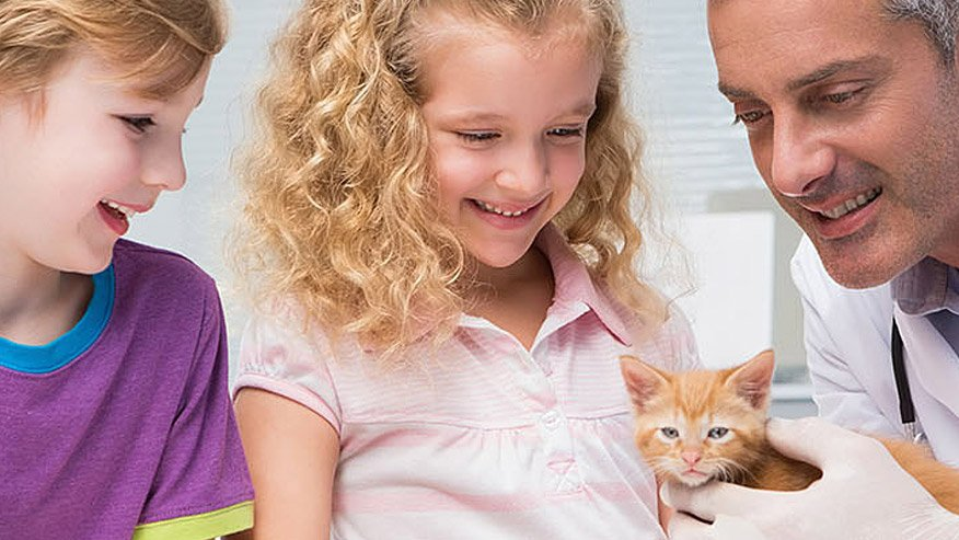 VCA Home Delivery Picture of Veterinarian with Children and Cat