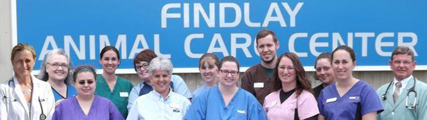Team Picture of VCA Findlay Animal Care Center