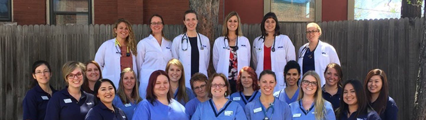Team Picture of VCA Firehouse Animal Hospital