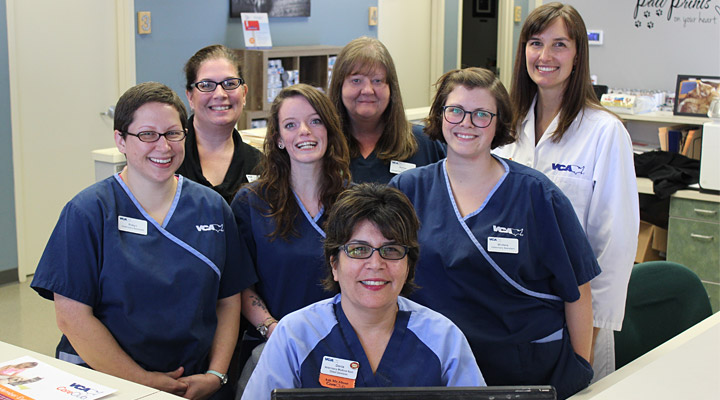 Homepage Team Picture of VCA Five Corners Animal Hospital