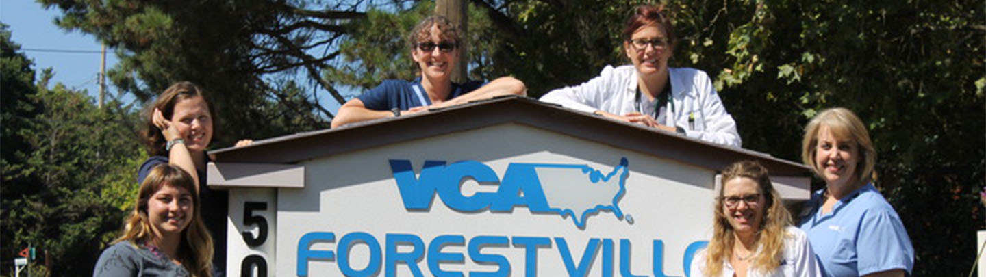 VCA Forestville Animal Hospital - Our Team