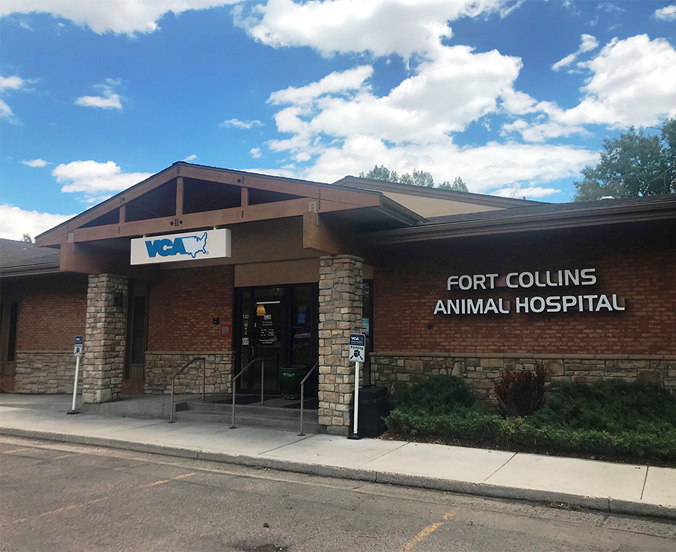 VCA Fort Collins
