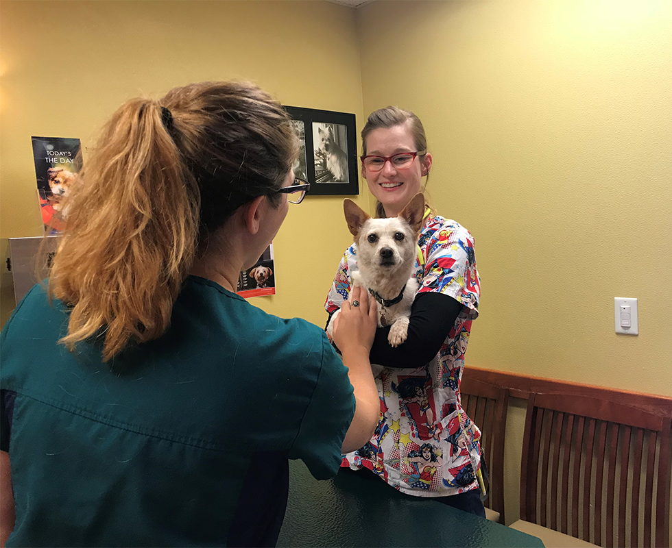 VCA Fort Collins Animal Hospital | Staff Page