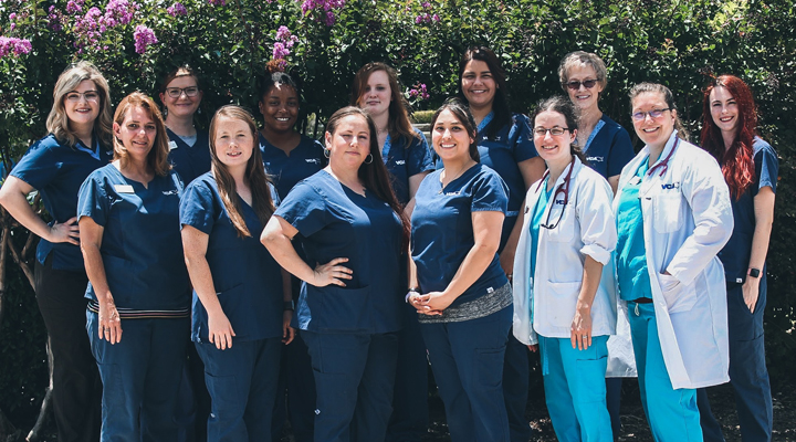Team Picture of VCA Fort Worth Animal Hospital