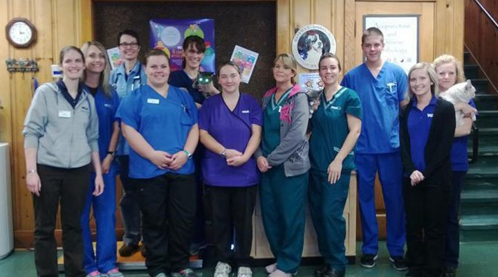 VCA Gateway Animal Hospital - Our Team