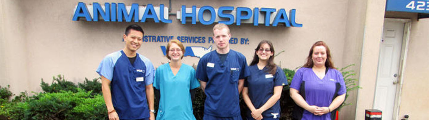 Team Picture of VCA Gateway Animal Hospital